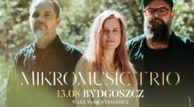 bilety na koncerty Mikromusic