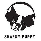 Bilety na koncerty Snarky Puppy