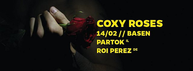 COXY ROSES