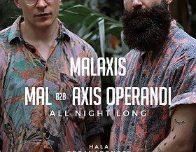 Malaxis