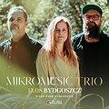 Pop / Rock: Mikromusic Trio | Bydgoszcz, Bydgoszcz