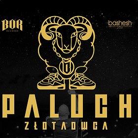 Koncerty: Paluch - Poznań