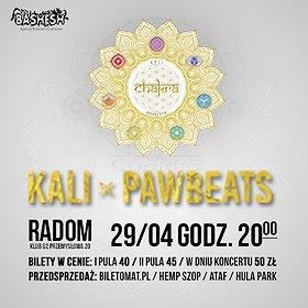 Koncerty: Kali x Pawbeats