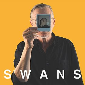 Pop / Rock : Swans