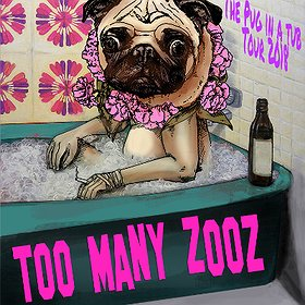 Koncerty: Too Many Zooz - Poznań