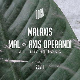 Muzyka klubowa: Malaxis | All Night Long