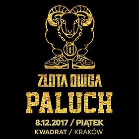 Koncerty: Paluch - Złota Owca - Kraków