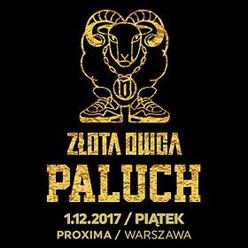 Koncerty: Paluch - Złota Owca - Warszawa