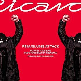 Hip Hop / Reggae: Peja/Slums Attack | Rzeszów