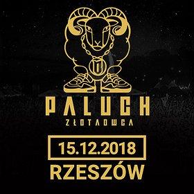 Koncerty: Paluch - Rzeszów