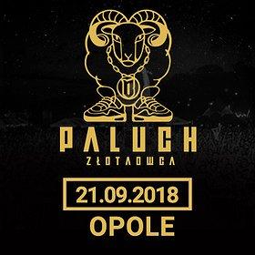 Koncerty: Paluch - Opole