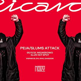 Hip Hop / Reggae: Peja/Slums Attack/Gandzior/DVJ Rink   Wejherowo