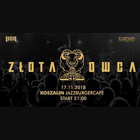 Koncerty: Paluch - Koszalin