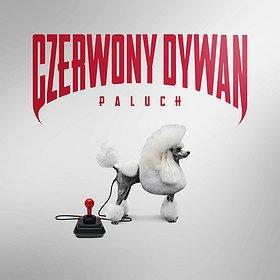 Concerts: PALUCH - CZERWONY DYWAN
