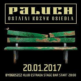 Koncerty: Paluch Bydgoszcz