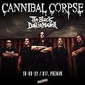 Hard Rock / Metal: CANNIBAL CORPSE + THE BLACK DAHLIA MURDER | POZNAŃ, Poznań