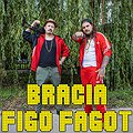 Koncerty: A2 | Bracia Figo Fagot, Wrocław