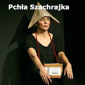 Teatry: Pchła Szachrajka