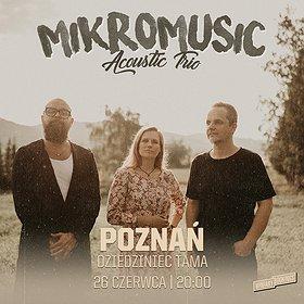 Pop / Rock: Mikromusic Acoustic Trio / dziedziniec Tamy / Poznań
