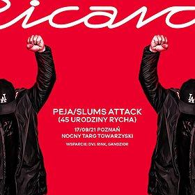 Hip Hop / Reggae: Peja/Slums Attack + goście | Poznań | 45 URODZINY RYCHA