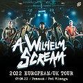 Pop / Rock: A WILHELM SCREAM, Poznań