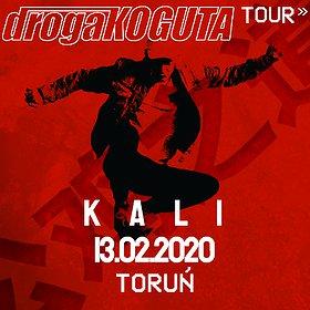 Hip Hop / Reggae: Kali | Toruń