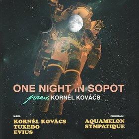 Muzyka klubowa: One Night In Sopot / Kornel Kovacs