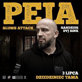 Hip Hop / Reggae: Peja/Slums Attack / Dziedziniec Tama / Poznań