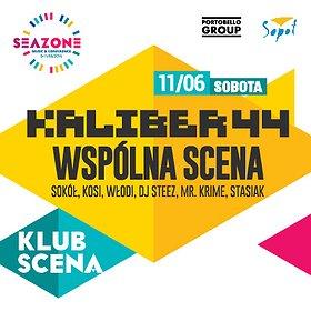 Koncerty: Kaliber 44 / Wspólna Scena / SeaZone 2016