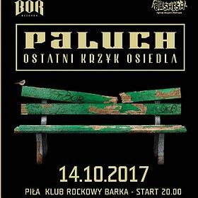Koncerty: Paluch - koncert w Pile