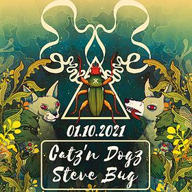 Muzyka klubowa : Projekt Pralnia | Catz n Dogz & Steve Bug