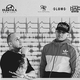 Koncerty: Peja / Brahu - Remisja Tour 2017