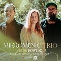 Pop / Rock: Mikromusic Trio | Powidz, Powidz