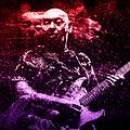 Pop / Rock: Darek Kozakiewicz Live w Lemon Tree, Łomianki
