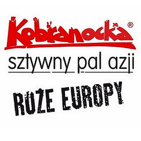 Pop / Rock: Kobranocka, Róże Europy, Sztywny Pal Azji