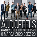 Pop / Rock: AudioFeels, Poznań