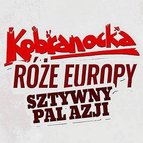 Pop / Rock: KOBRANOCKA, RÓŻE EUROPY I SZTYWNY PAL AZJI!