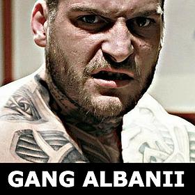 Koncerty: Gang Albanii live