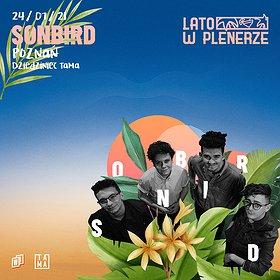 Pop / Rock: Lato w Plenerze | Sonbird | Poznań