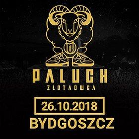 Koncerty: Paluch - Bydgoszcz