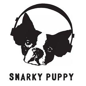Koncerty: Snarky Puppy
