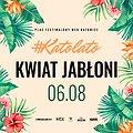 Pop / Rock: Katolato: Kwiat Jabłoni, Katowice