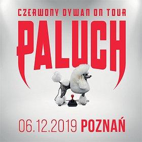 Hip Hop / Reggae: Paluch - Poznań