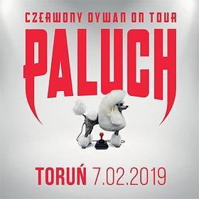 Koncerty: Paluch - Toruń