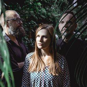 Concerts: Mikromusic Acoustic Trio